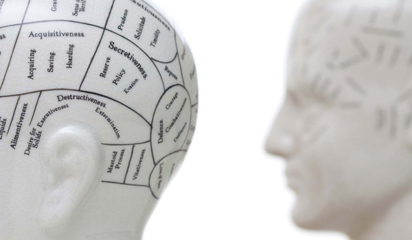 concept of accessibility and map of human brain