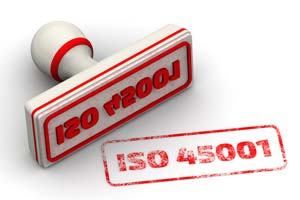 ink stamp for iso 45001 consultancy services