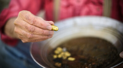 Man holding out golden nugget found from panning for gold.