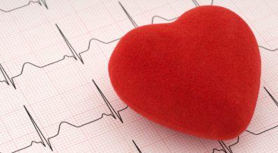 """(alt=""""Red felt heart on ECG printout"""")"""